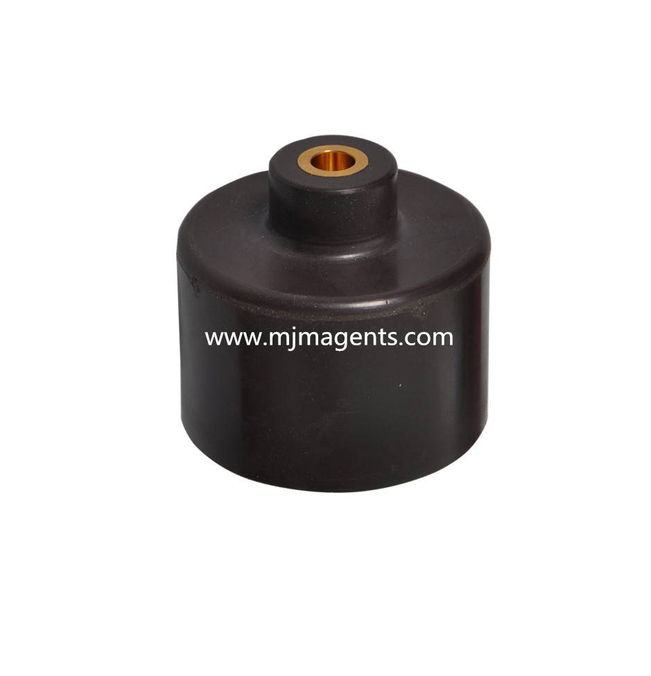 plastic injection molded magnet for oil pump