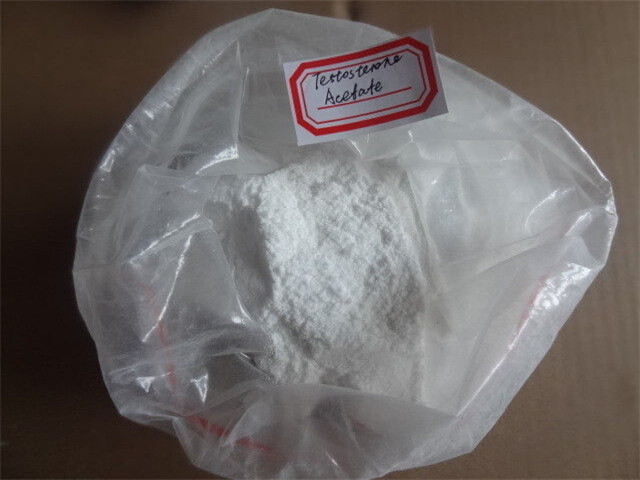 China Steroid Body Powder Test Testosterones Base 99% Purity