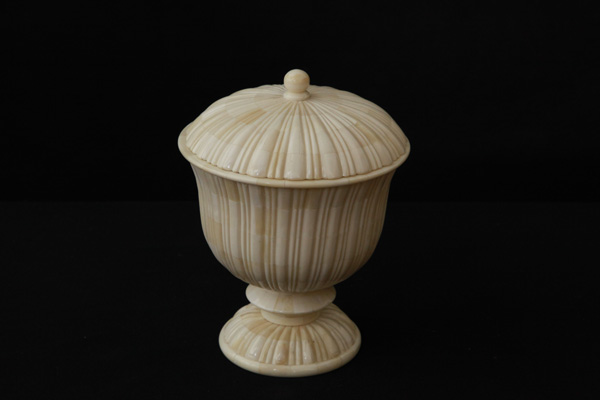 Bone Decorative Crafted Urn with Lid
