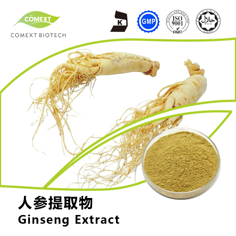 Panax Ginseng Root Extract Ginsenosides USP/EP/FDA Standard