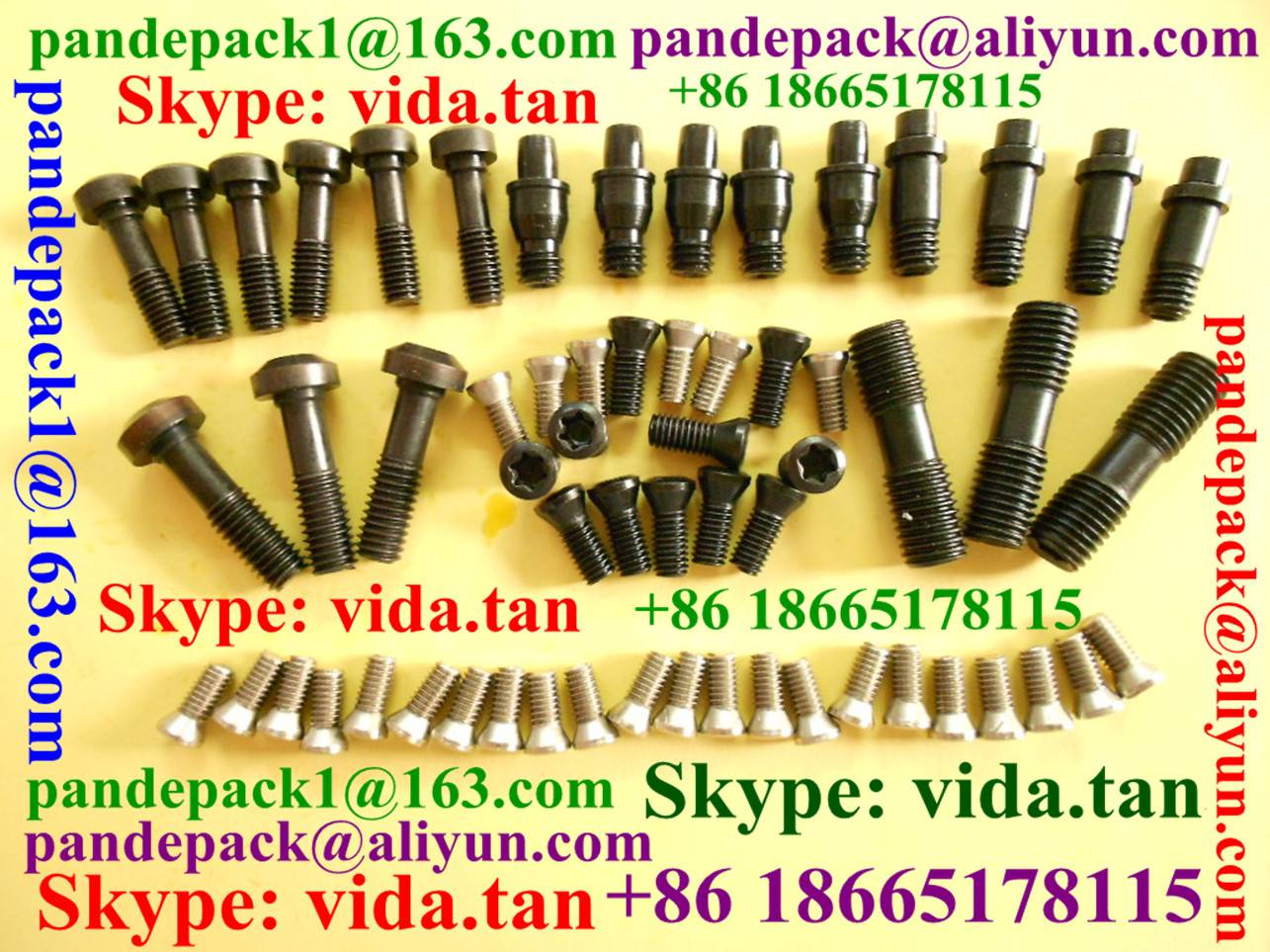 Torx Screw and Allen Screw for Tool Holder/Clamp Screw/Shim Screw/Insert Screw/Hexagonal Ring Screw