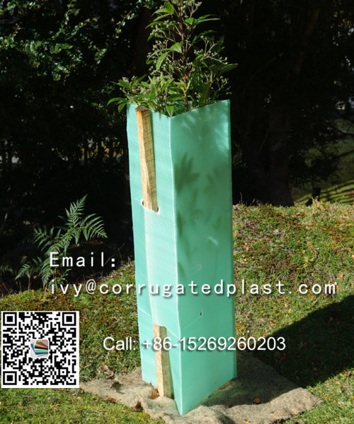 PP corflute tree shelters /tree guards for protecting plants manufacturer