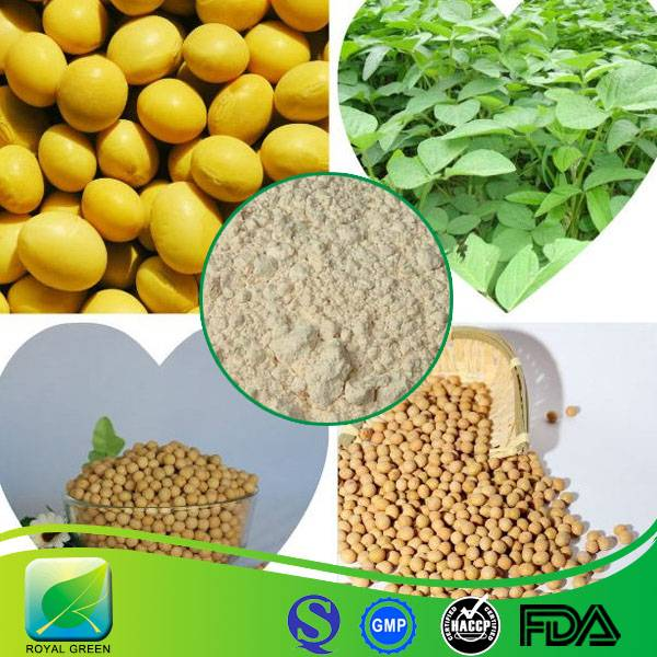 Factory Supply Pure Natural Soybean Extract