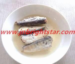 canned sardine in brine
