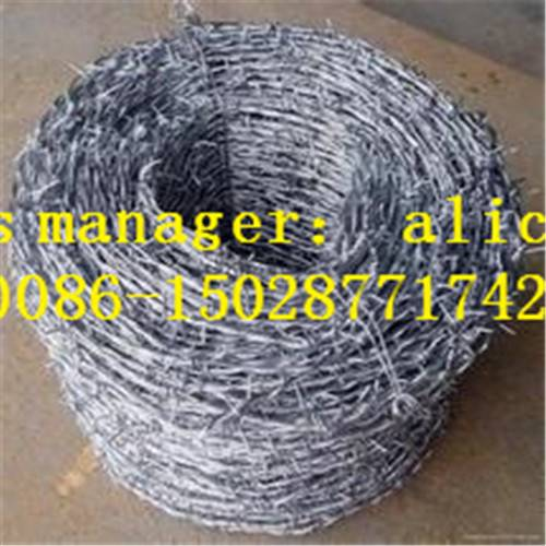 barbed wire|hot dipped barbed wire|electro galvanized barbed wire|pvc coated barbed wire