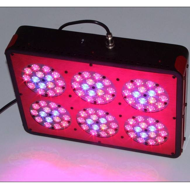 Georgia 2014 newest led grow lights hydroponics indoor gardening