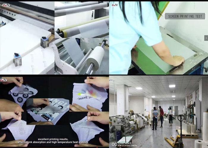 Factory Made Cold/Hot Peel Matt/Glossy Heat Transfer Film for T-shirt Sportswear Brand Heat Transfer