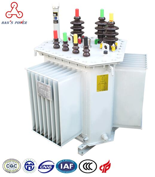 China S11 Oil Immersed 3 Phase Power Transformer