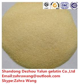 20~600bloom edible gelatin for candy/yogurt products