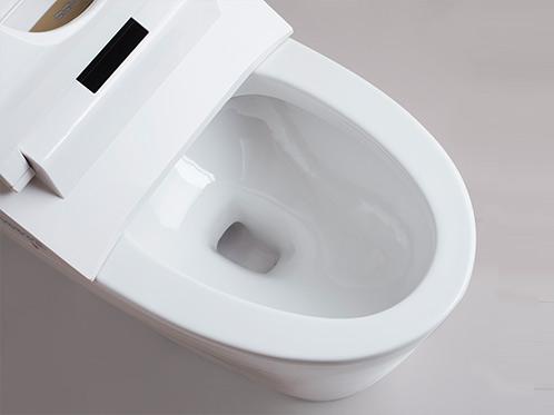 [SSWW] Smart Toilet