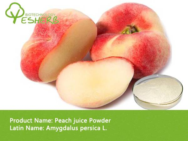 spray dried health food Peach juice Powder