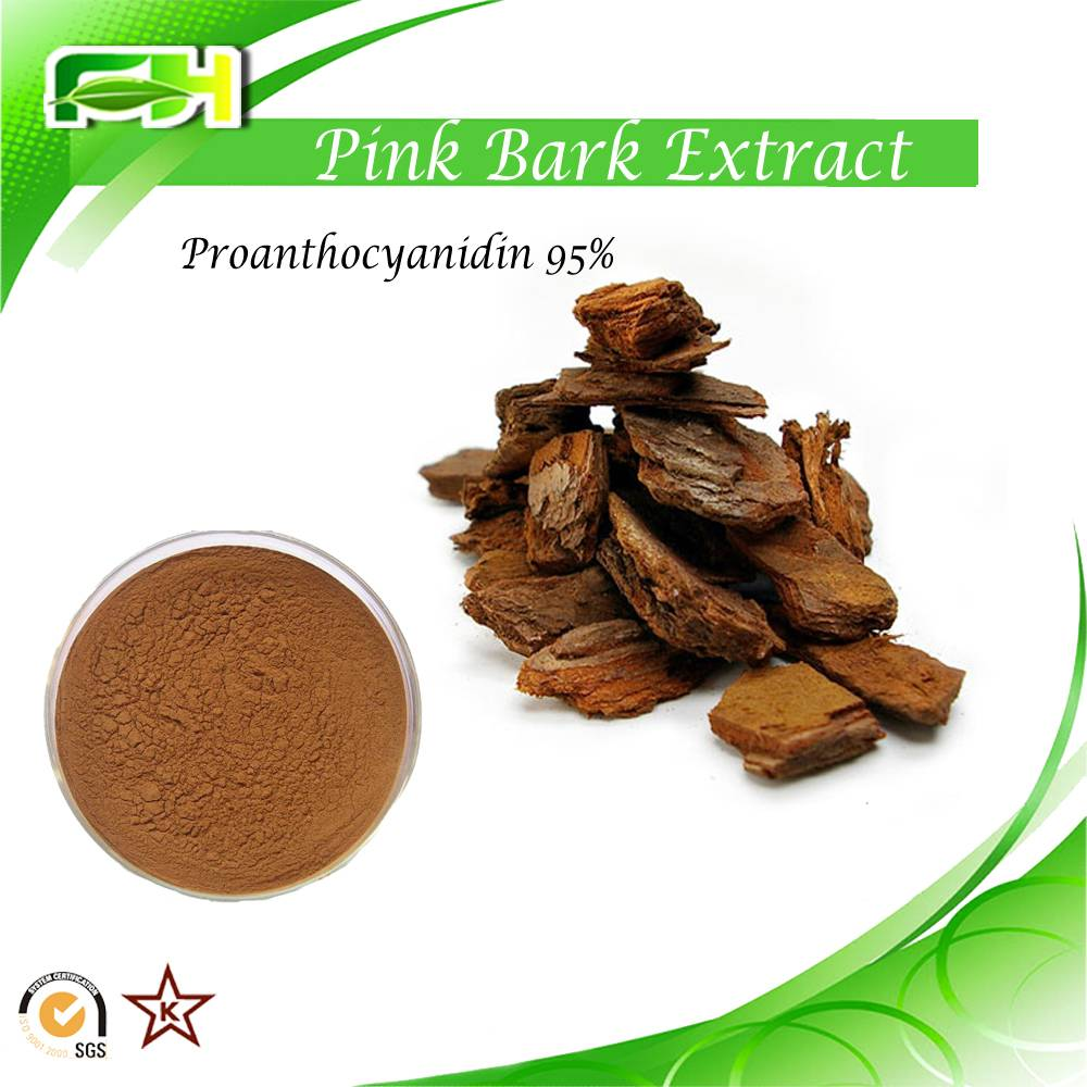 Factory Supply Pine bark extract Proanthocyanidin