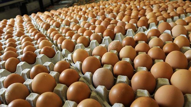 Cheap White/Brown Fresh Table Chicken Eggs For Sale