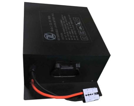 Lithium Iron Battery Pack