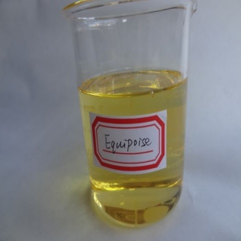 Boldenone undecylenate,China Boldenone undecylenate liquid,Equipoise,Ganabol,Equigan,Ultragan