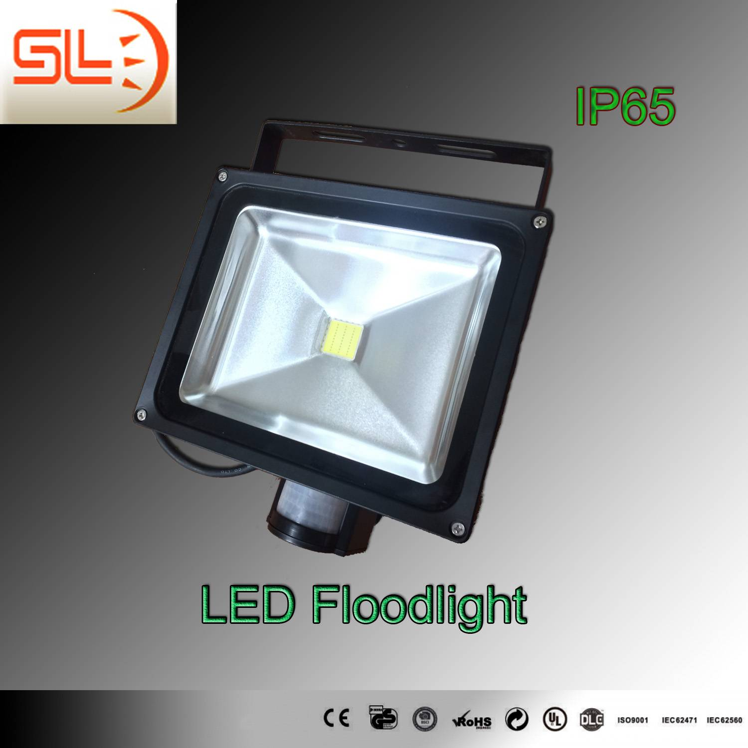 IP65 LED Flood Light with CE