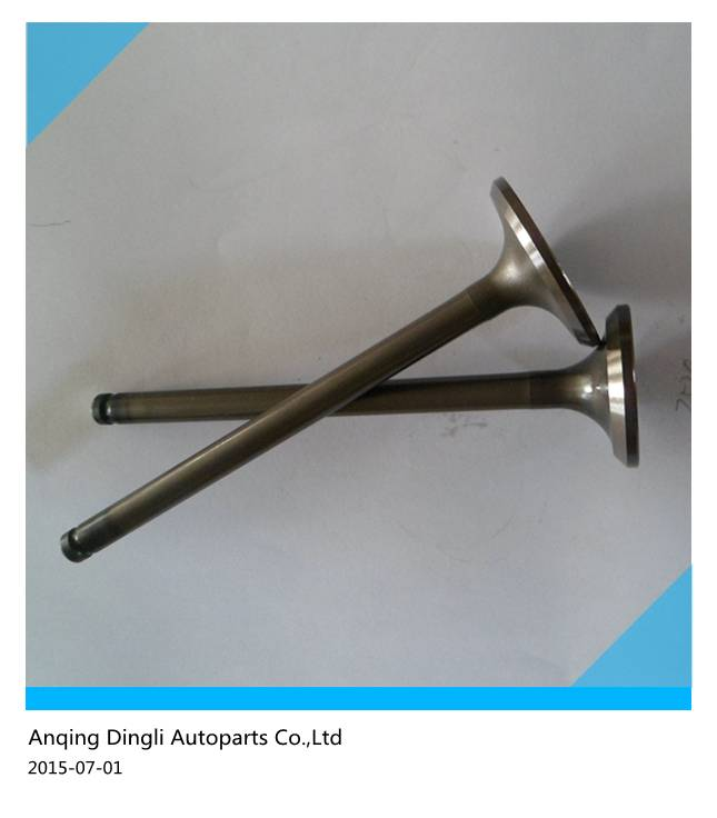 China supplier for CDI engine valve for auto rickshaw,engine Valve auto rickshaw spare parts
