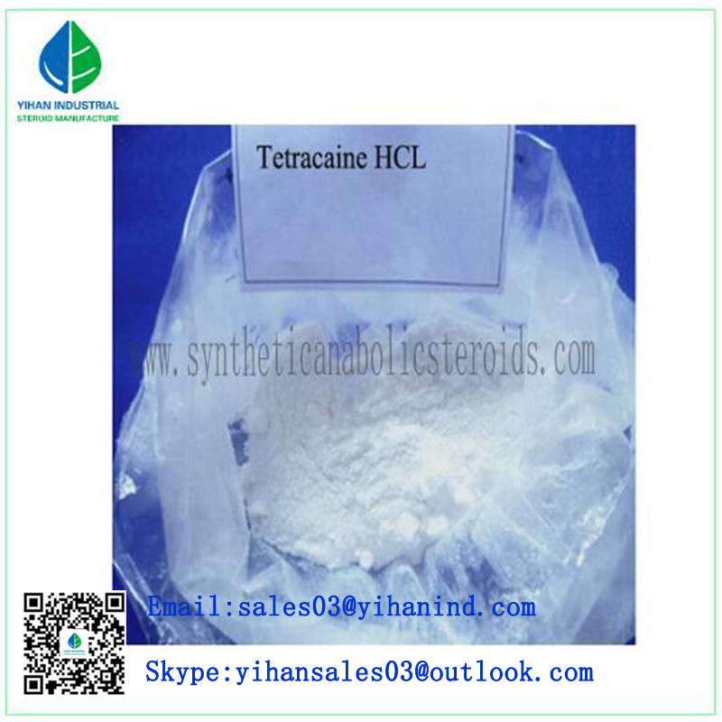 99% Purity Potent Local Anesthetic Pharmaceutical Tetracaine Hydrochloride/Tetracaine CAS:94-24-6 Ir
