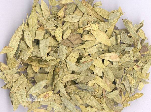 Factory Sully High QualitySenna Leaf extract In China Market