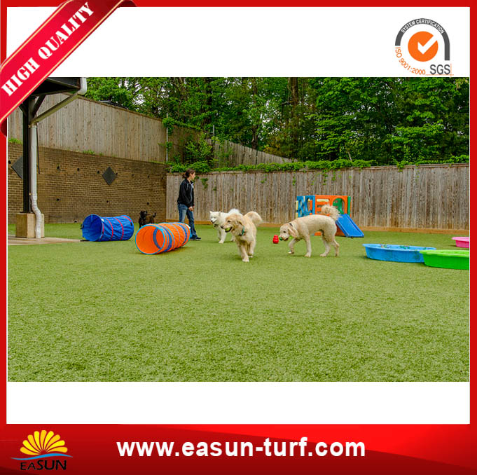 Pet Friendly Synthetic Turf Carpet with Factory Price-MY