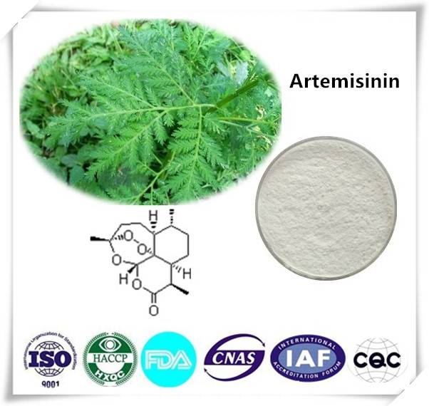 Artemisinin  99% Cas number:63968-64-9 HPLC 1kg/bag