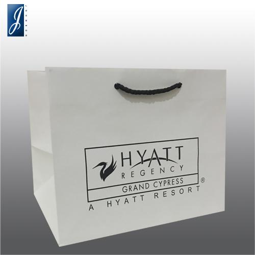 Customized gift paper bag for HYATT