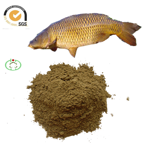 fish meal of high protein