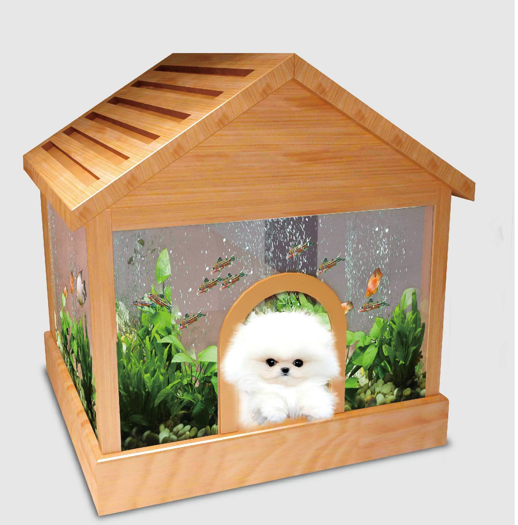 Pet house aquarium
