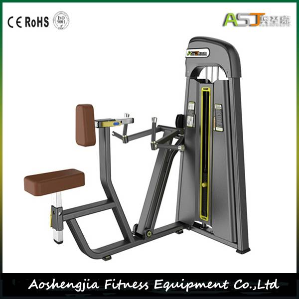 Commercial Fitness Equipment/Gym Equipment/S805 Vertical Row