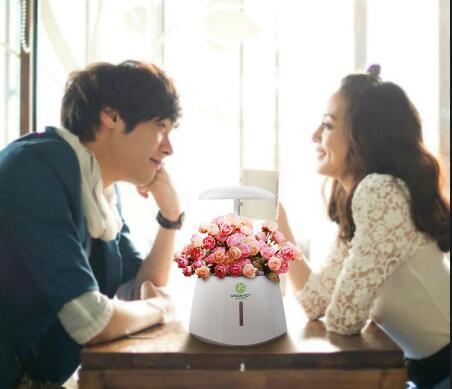 NASO indoor smart garden flower vase with self-watering and lighting system