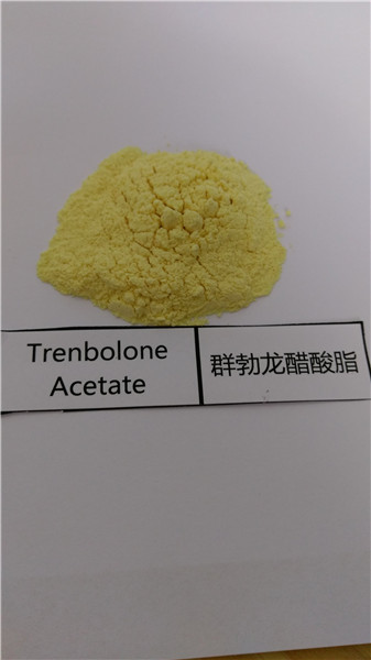 Body Building Intramuscular Revalor-H Trenbolone Acetate (CAS 10161-34-9)