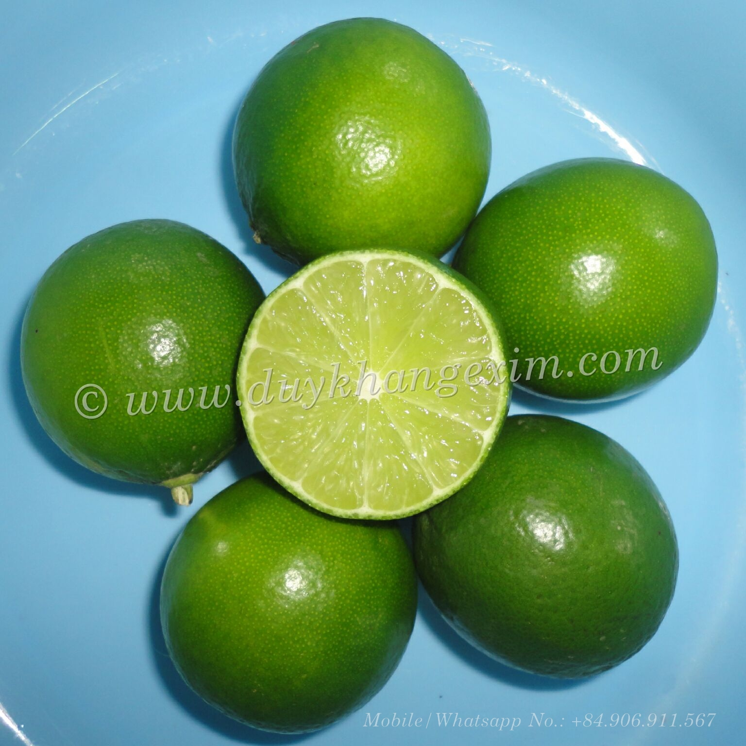 LIME SEEDLESS ORIGIN VIETNAM |Whatsapp No. +84 903 887 753
