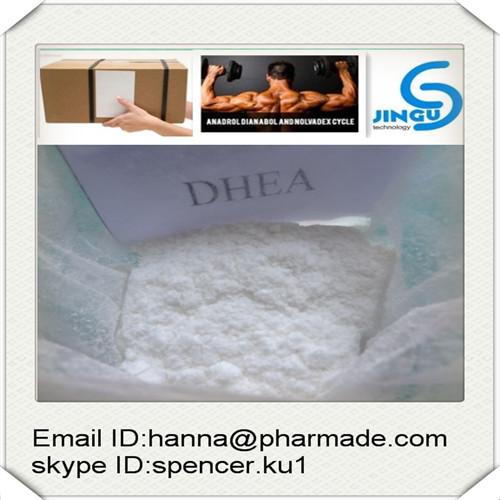 Buy DHEA raw powder source 100% safely delivery