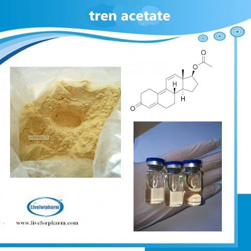 TRENBOLONE SERIES Trenbolone Acetate use for muscle and strength gain CAS 10161-34-9 98.8% above pur