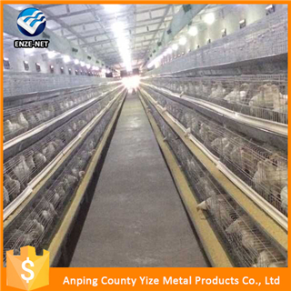 agriculture farming breeder equipement broiler chicken raising cage