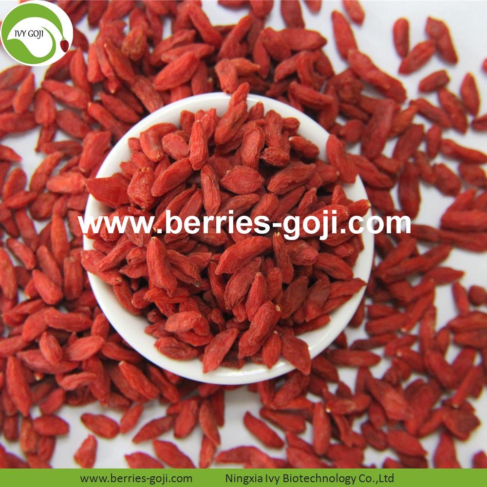 Hot Sale Nutrition Dried Organic Goji