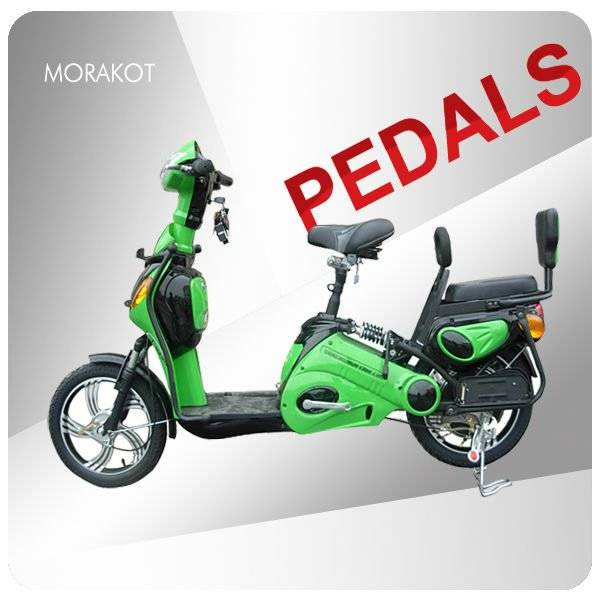 Canada 350W electric bike/ bicycle with double seat --LS5-4