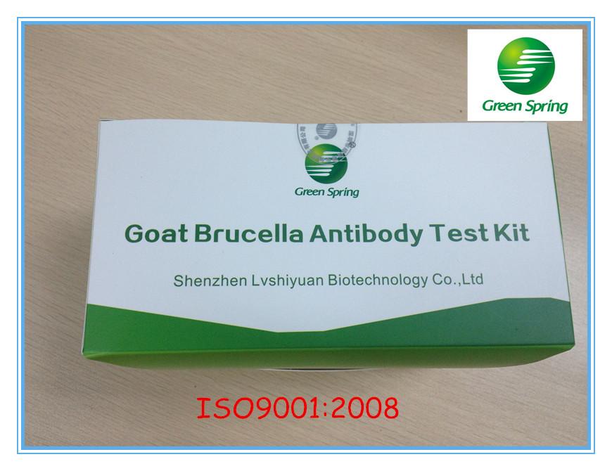 Bovine Brucella Antibody rapid test strip