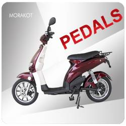 250W electric scooter with pedals --LS4