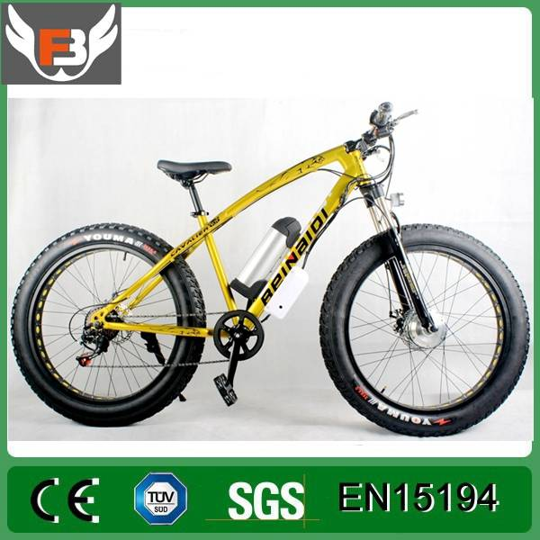 Hub Motor Electric Bicycle/Bike with 26*4.0 Fat Tire