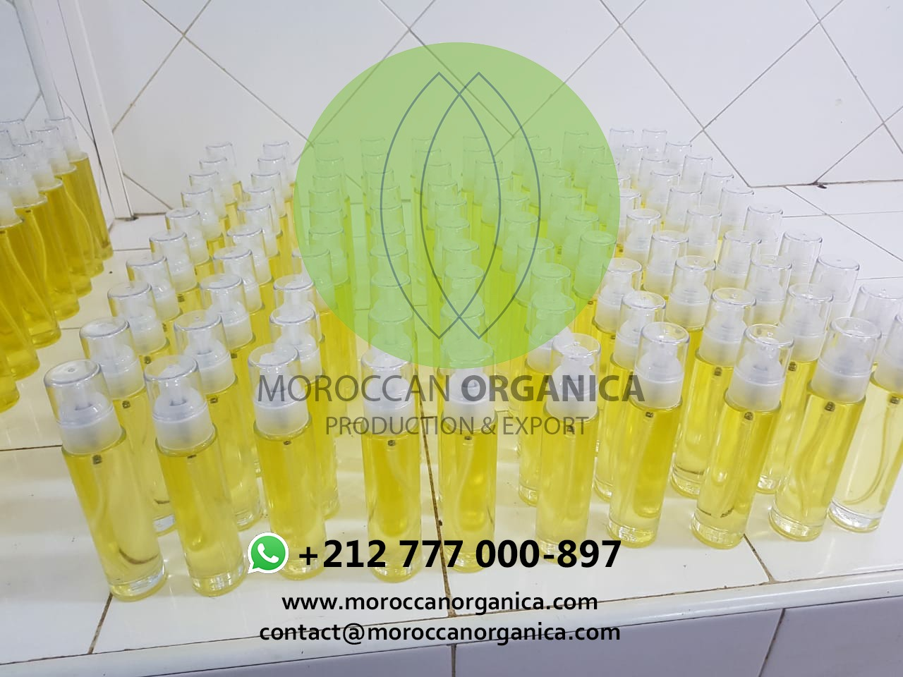 prickly pear seed oil morocco