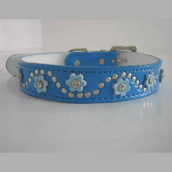 Leather Dog Collar with Colourful Flowers