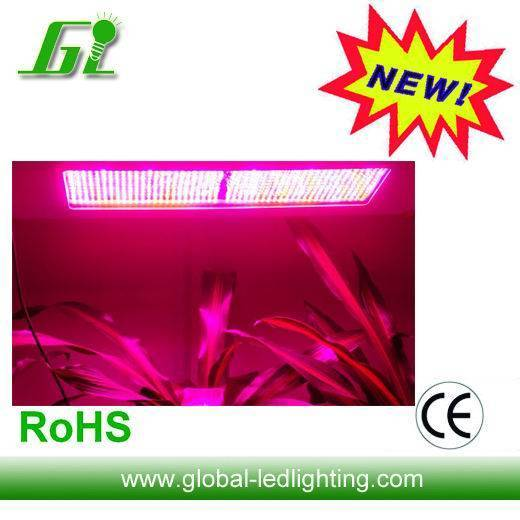 (CE&RoHs) Hot 600W LED Grow Light for Agriculture Greenhouse