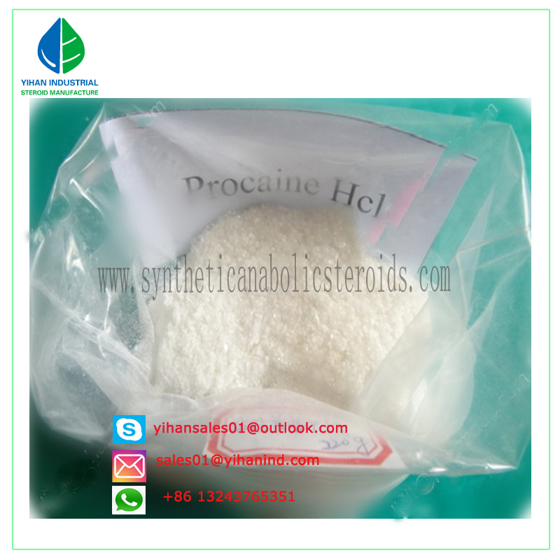 99% Topical Anesthesia Pain Killer Powder Procaine Hydrochloride/Procaine HCl 1040 mesh 51-05-8 Judy