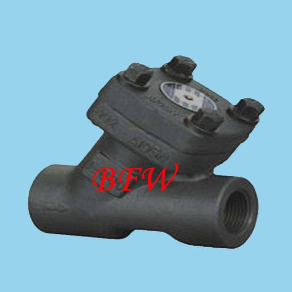 Forge steel check valve