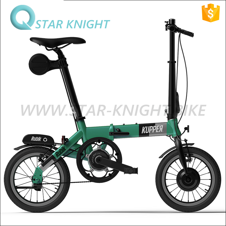 E-Bike Fashion 24V Battery Bicycle Custom Alloy Frame Folding Bike