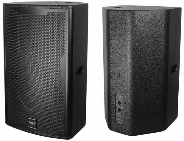 TK10 Single 10 inch full frequnecy speaker