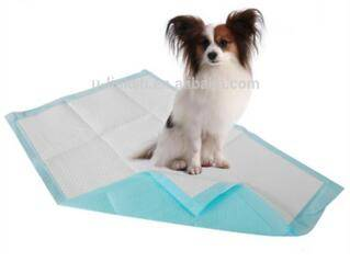 60*60 Super Absorbent Scented Puppy Training Pads