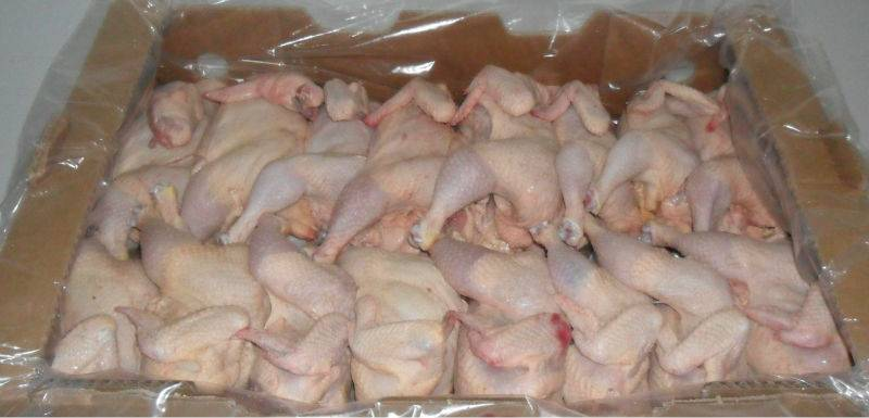 Best Quality halal frozen whole chicken brazil (competitive price)