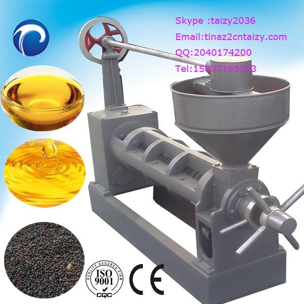 Olive oil press machine | Peanut oil press machine on sale
